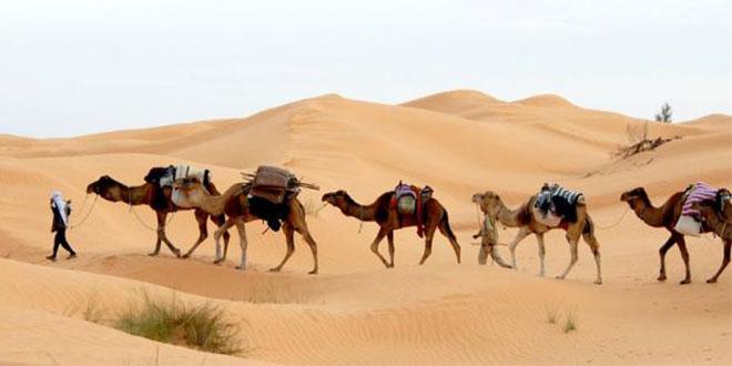 تحفيزات و منح لدعم السياحة الصحراوية بالجنوب الغربي